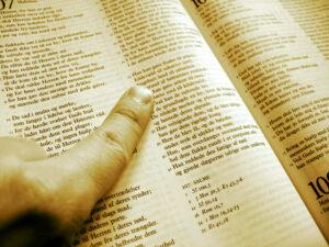 Studido - læs intensivt